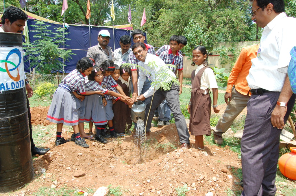 Plantation by school children & grown tree
